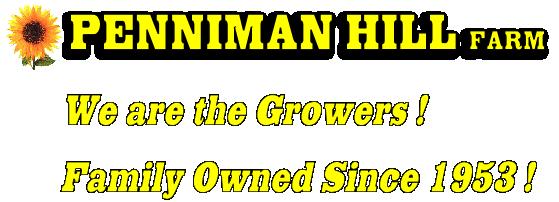 Penniman Hill Farm